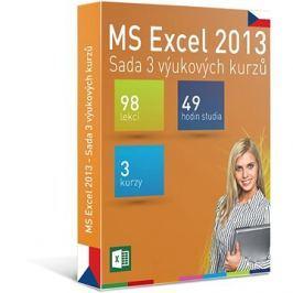 GOPAS MS Excel 2013 - 3 samostudijní výukové kurzy na 365 dní CZ (elektronická licence)