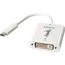 OEM USB 3.1 (USB C) -> DVI
