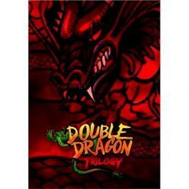 Double Dragon Trilogy (PC) DIGITAL