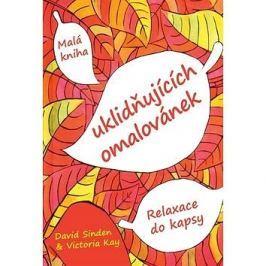 Malá kniha uklidňujících omalovánek: Relaxace do kapsy
