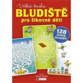 Bludiště pro šikovné děti velká kniha: 128 super bludišť!
