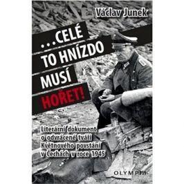 Celé to hnízdo musí hořet: Literární dokument o odvrácené tváři Květnového povstání v Čechách 1945
