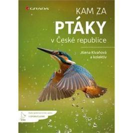 Kam za ptáky: v České republice