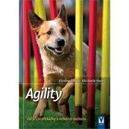 Agility: Od první překážky k velkému parkuru