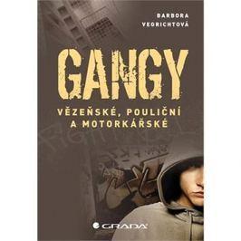 Gangy: Vězeňské, pouliční a motorkářské