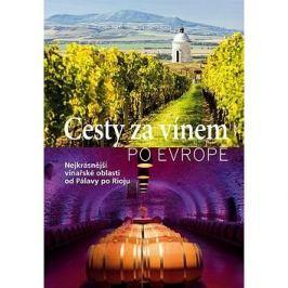 Cesty za vínem po Evropě: Nejkrásnější vinařské oblasti od Pálavy po Rigu