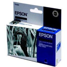 Epson T0481 - originální Epson