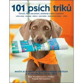 101 psích triků: Činnosti, které psa pobaví, zaměstnají a sblíží s páníčkem