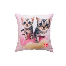 Dětský dekorační polštářek s fototiskem Kočičky 40x40