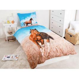 Detexpol povlečení bavlna Hnědý kůň Horse riding 140x200 70x80