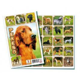 Psi společenská hra 32 obrázkových dvojic