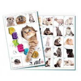 Kočky společenská hra 32 obrázkových dvojic