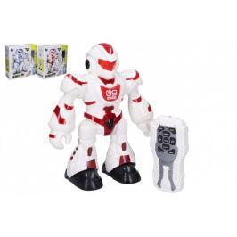 Robot - 23 cm