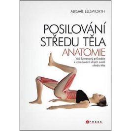 Posilování středu těla Anatomie: Váš ilustrovaný průvodce k vybudování silných svalů středu těla