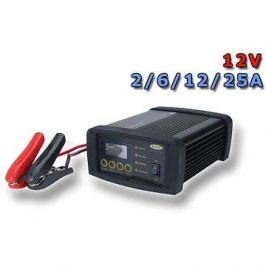 RING RSCPR25, 12V 2 - 25A